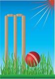Wicket e sfera del grillo Fotografie Stock Libere da Diritti