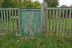 Wicket on a gray wooden fence in green grass Stock Photos