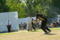 Wicket-keeper foto de stock