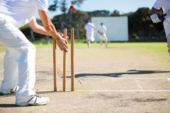 Wicket keeper hitting stumps during match. On sunny day Royalty Free Stock Images