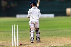 Wicketes del bateador del grillo hacia fuera Fotos de archivo libres de regalías