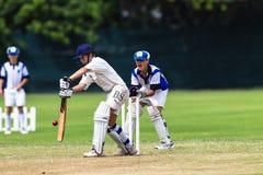 Wicketkeeper minore del battitore del cricket Fotografia Stock