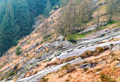 Wicklow Royalty Free Stock Images