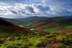 Wicklow dolina Zdjęcia Royalty Free