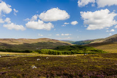 Wicklow Mountains in Ireland Stock Photos