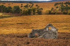 Wicklow National Park/ Wicklow Mountains/ Wicklow National Park in Ireland