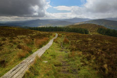 Wicklow way trail leading to the vibrant irish landscape. Beautiful landscape in the wicklow mountains, Ireland royalty free stock photography