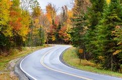 Wicklung Forest Road im Herbst Lizenzfreie Stockbilder