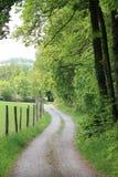 Wicklungslandstraße entlang einem Wald Lizenzfreies Stockfoto