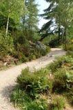 Wicklungsweg bei Rogie fällt, nahe Strathpeffer, Hochländer, Schottland, stockfotografie