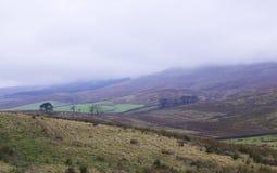 Widdale bajó parque nacional de los valles de Yorkshire imagenes de archivo