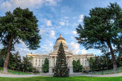 Wide angel view of the capitol Christmas tree Stock Photography