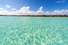 Wide Angle Caribbean Sea View Stock Images