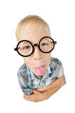 Wide angle close-up funny portrait of boy a student in shirt in glasses, looking at camera, showing tongue, isolated on white back Royalty Free Stock Photos