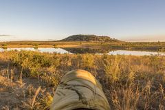 Wide angle on a lake and lens of photographer, Kruger national park, South Africa Royalty Free Stock Images