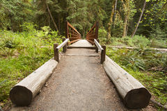Wide angle of Nature Bridge end near Marymere Falls, Olympic National Park Royalty Free Stock Image
