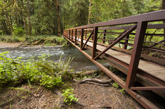 Wide angle photo of Metal Nature Bridge end near Marymere Falls, Olympic National Park. Horizontal wide angle Photo of Metal Nature Bridge over stream near Royalty Free Stock Images