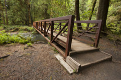 Wide angle photo of Nature Bridge end near Marymere Falls, Olympic National Park Stock Photos