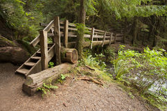 Wide angle photo of wooden Nature Bridge end near Marymere Falls, Olympic National Park. Horizontal wide angle Photo wooden of Nature Bridge over stream near Stock Photography