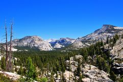 Lake, forest and mountains in Yosemite. Wide angle photography in Yosemite National Park, with mountains, a forest, and Tenaya lake, California, USA Stock Photo