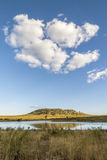 Wide angle on savannah, Kruger national park, South Africa Stock Images