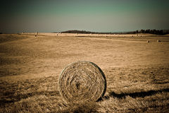 Wide angle shot of a field with haystacks. With the focus on one in the foreground Stock Photos