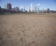 Goose footprints in Chicago Stock Photography