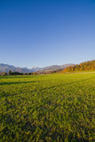 Wide angle Slovenian alps Royalty Free Stock Images