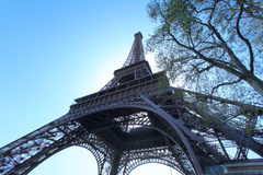 Wide-angle view of Eiffel Tower, Paris, France Royalty Free Stock Images