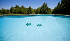 Wide angle view of a garden pool royalty free stock photos