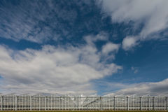 Wide angle view of an industrial greenhouse. With blue sky with clouds Stock Photography