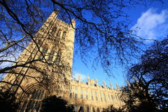 Wide Angle View of Parliament Building of the UK Royalty Free Stock Image