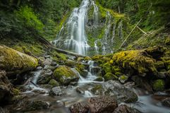 Wide Angle View of Proxy Falls from Water Level. In Central Oregon Wilderness stock image