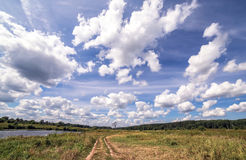 Wide angle view of road with a single tree near a summer swamp under blue cloudy sky. Wide angle panoramic view of long road with a single tree near a summer Stock Photos