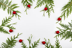 Wide arch shaped Christmas border on white, composed of fresh fir branches Royalty Free Stock Photo