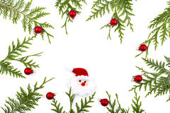 Wide arch shaped Christmas border on white, composed of fresh fir branches Stock Photography