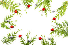 Wide arch shaped Christmas border on white, composed of fresh fir branches Stock Image