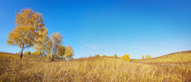 Wide autumn panorama in the hills Royalty Free Stock Photos