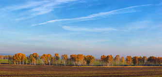 Wide autumn panoramic landscape Stock Images
