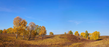 Wide autumn panoramic landscape in the hills Stock Photos