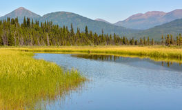 Wide calm stream in mountain valley Royalty Free Stock Photo