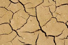 Wide cracks in the dried up ground Royalty Free Stock Images