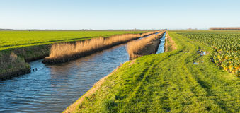 Wide ditch in an agricultural landscape Royalty Free Stock Images