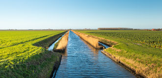 Wide ditch in an agricultural landscape Royalty Free Stock Photo