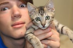 Wide-eyed kitten with teen Royalty Free Stock Photos