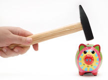Wide eyed piggy bank. Scared wide eyed piggy bank about to get smashed open and broken by hammer for savings cash Royalty Free Stock Images