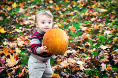 Wide Eyed Toddler Outside Holding a Big Pumpkin Stock Image