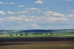 Wide field with distant trees and blue sky with white clouds Royalty Free Stock Photos