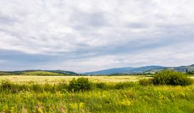 Wide field in rural area on a cloudy day. Lovely nature scenery in summer royalty free stock images