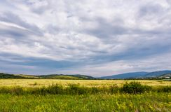 Wide field in rural area on a cloudy day. Lovely nature scenery in summer stock images